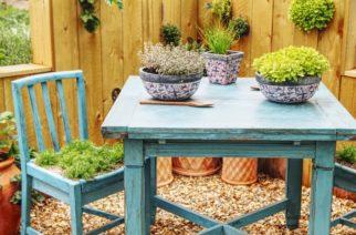 Ako sa správne starať o drevo v záhrade?